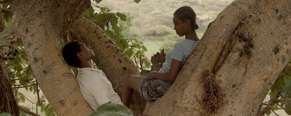 African Film Festival – »Fig Tree«